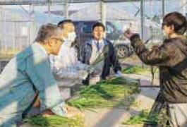 営農担当職員による説明