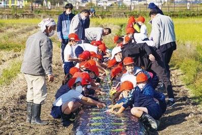 福田さんの指導で玉ねぎ苗を定植